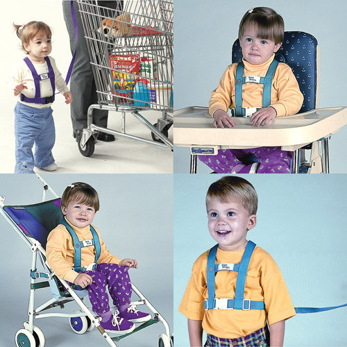 47414001704 Baby Buddy Deluxe Security Harness with Tether and Chair