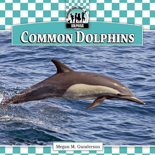 an introduction to the nature of the dolphin David attenborough's favourite moments from the last 30 years and to balance an uncensored view of nature with the audience pantropical spotted dolphin.