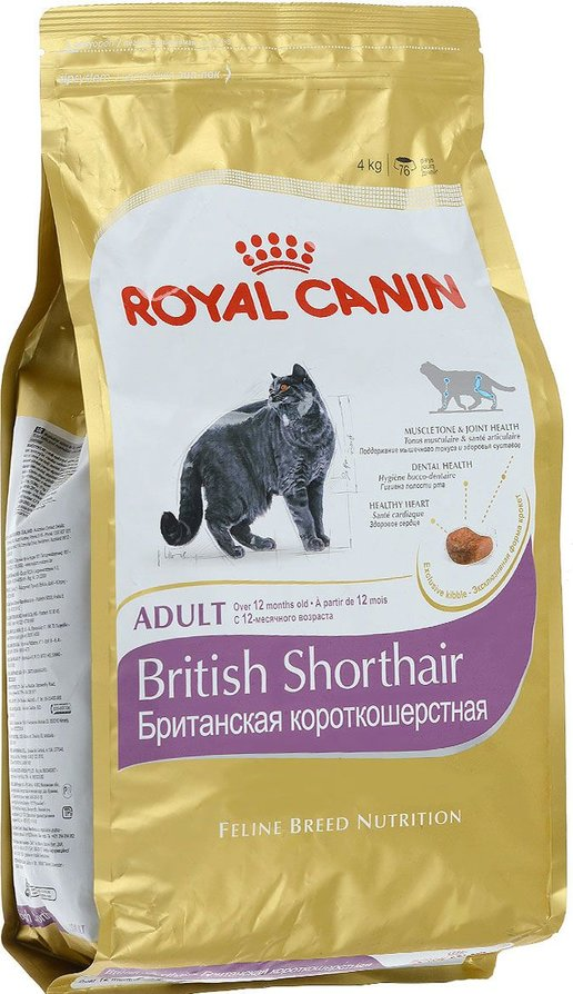 Корм royal canin british shorthair kitten